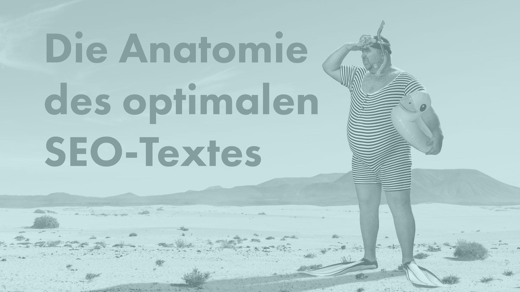 Online-Kurs: Die Anatomie des optimalen SEO-Textes